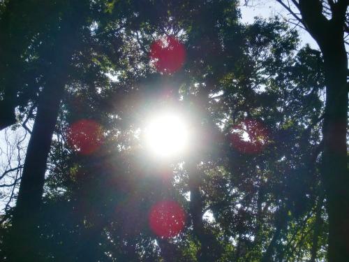 テレビドラマ『大岡越前』と言え 大岡越前復活: げっとんのブログ